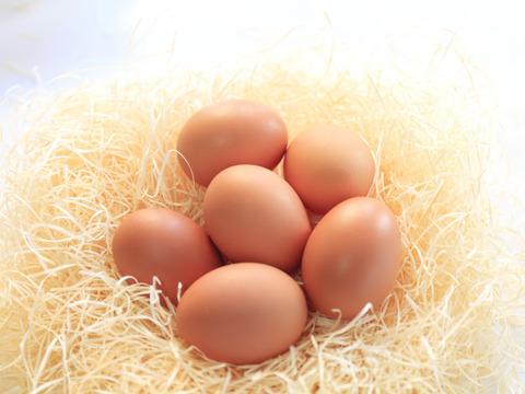 健康と美容によい餌を与えた平飼い有精卵【大地の卵】 20個