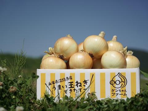 【お陰様でリピーター様多数!】淡路島玉ねぎ 3kg 特別栽培 ひょうご安心ブランド認証取得