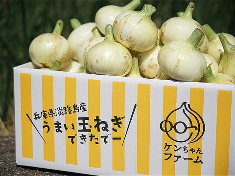 【お陰様でリピーター様多数!】淡路島新玉ねぎ 10kg 特別栽培 ひょうご安心ブランド認証取得