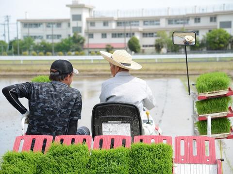 農業歴60年越えのベテランが作ったコシヒカリ【白米】10kg