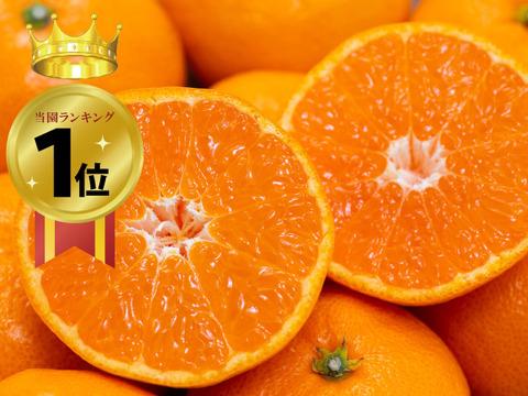 【みかんの早割!】夕やけみかん(10㎏)S~L玉 (大人気のみかんです!)※11月発送開始
