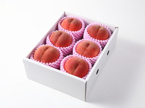 【樹上完熟】果樹王国山形からお届けする 樹上完熟 白桃 約2㎏(5玉~8玉入り) B1-01