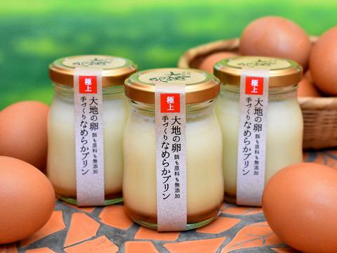 大地の卵 とろけるなめらかプリン 6個セット
