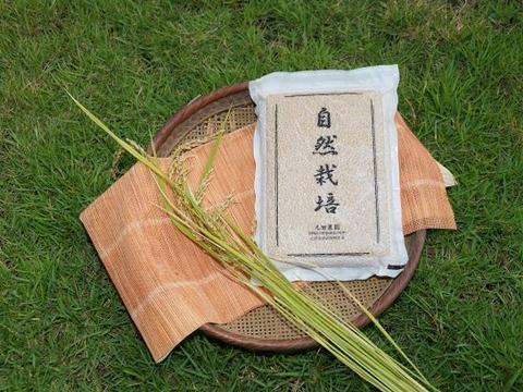 新米販売開始!【名水に育まれた自然栽培米】『元田旭』精米4.5㎏