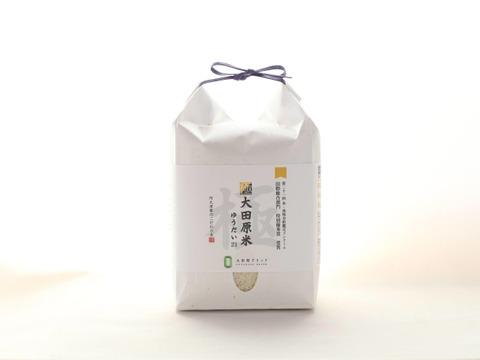 【極大田原米】金賞受賞 おいしさの追求と農薬不使用のプレミアム米【2kg】
