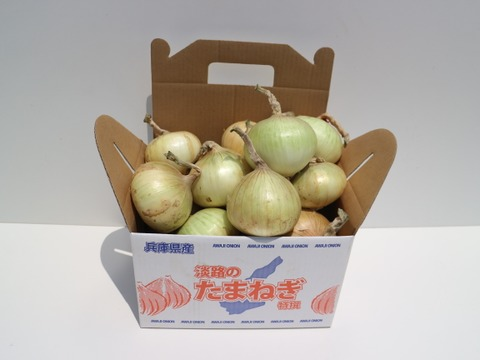 【3月~4月期間限定】シンプルにオニオンスライスがおすすめ! サクッと甘い新玉ねぎ(極早生種)【3kg】