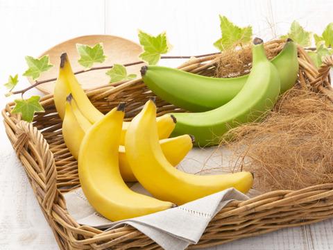 【幻のバナナ】グロスミッチェル種。お子様にも女性にも嬉しい『農薬不使用・国産・栄養満点』美バナナ 1本入り
