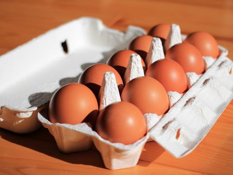 農家お勧め卵かけご飯セット(白米2kg、卵10個、だし醤油100ml)