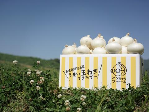 【希少品種につき数量限定!】真っ白な白たまねぎ 10kg 特別栽培 ひょうご安心ブランド認証取得