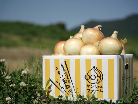 【お蔭様でリピーター様多数!】特別栽培 淡路島玉ねぎ 5kg「ひょうご安心ブランド認証取得のたまねぎ」