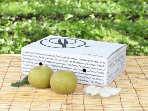 梨 南水特大【最終出荷】 秋の夜長に甘い日本梨はいかがでしょうか!8個程度(5kg程度)