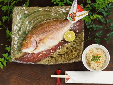【お食い初め、贈り物にも】蒸し焼き鯛1尾、鯛めし2個セット【瀬戸内の鯛】