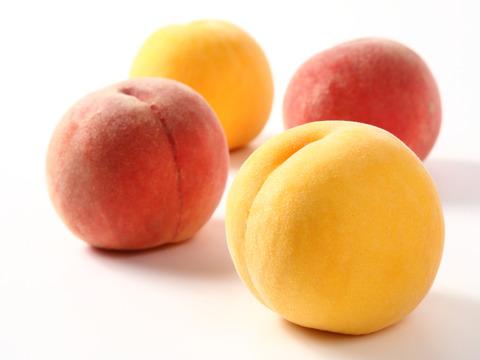 【樹上完熟】果樹王国山形からお届けする 訳あり白桃・黄桃 品種おまかせ 約2㎏(5玉~8玉入り)家庭用 A1-01