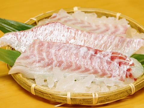 【2021食べチョク/夏】送料無料! 3000円以下おすすめ海鮮商品 ※売り切れ前に要チェック
