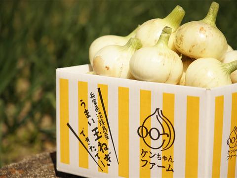 【お陰様でリピーター様多数!】淡路島新玉ねぎ 5kg 特別栽培 ひょうご安心ブランド認証取得