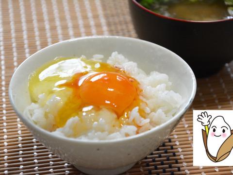 【2kg:お試価格】⚫甘みのある銀シャリ、新米・白米2kgを生産農家が直接配送します。