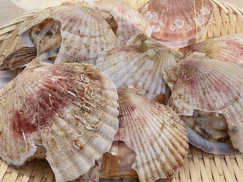 4月13日で終了!漁師の店の極上のホタテ訳あり大容量パック サイズ小 殻の割れなど