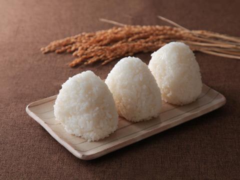 新米!【冷めてもおいしい!】令和3年産 特別栽培米コシヒカリ白米10kg
