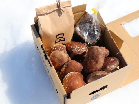 【初回限定BOX】うちやま農園米/ちょいワル椎茸/乾燥きくらげセット【はじめまして!】