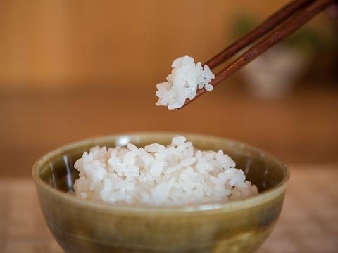 【完売御礼】R2年度/自然栽培米 白米 ISATOの3種食べ比べセット(数量限定)