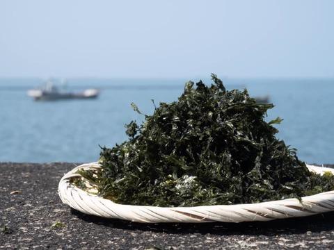 【有明産】海の恵みがたっぷり詰まった漁師のこだわり焼きバラ海苔