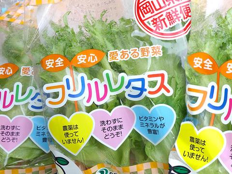 安全・安心・愛ある野菜 フリルレタス