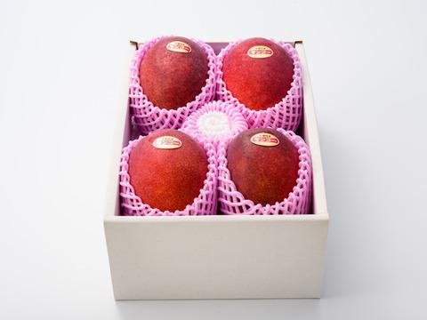 【順次発送中】サンライズファームのアップルマンゴー 【秀品】【2kg】