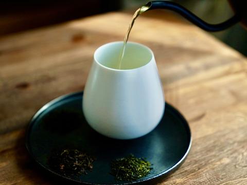 創業122年 お茶の常識が変わる究極のうれしの茶🍵5種ティーバッグセット