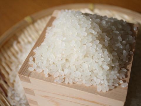 【おまけ付】贈り物に最適! 令和2年 新潟県産コシヒカリ とっても美味い精米(5㎏)【熨斗付き】