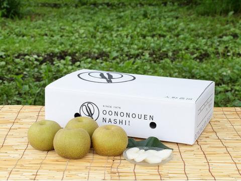 梨 豊水大玉【最終出荷】さわやかな香りと味が秋風を誘います!8~6個程度(5k程度)