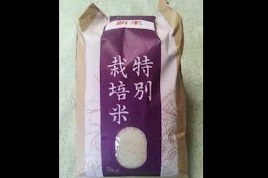 にこまる 玄米10kg