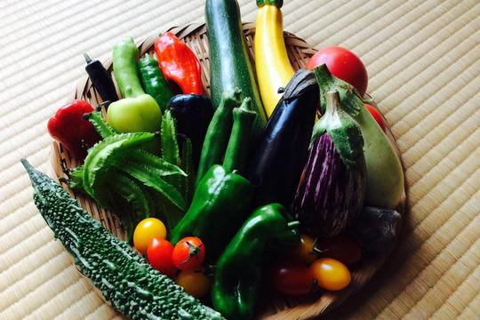 旬彩*野菜box(6品目以上)農薬/化学肥料・不使用