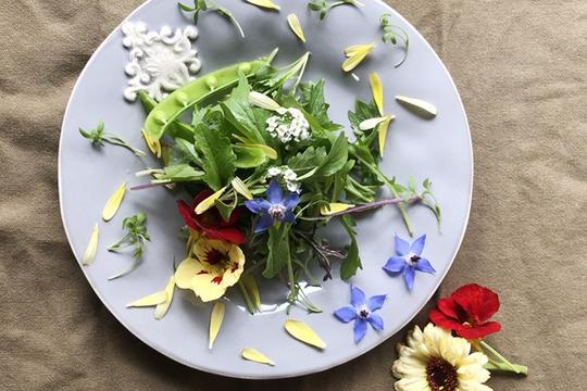 北八ヶ岳山麓よりお届け*花とハーブと葉野菜の週末サラダセット