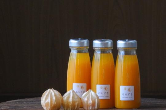 【飲む宝石】オレンジチェリー(食用ほおずき)ジュース180ml×3本セット