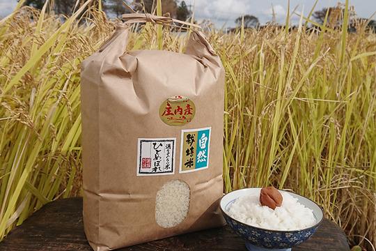 【上白精米 | 20kg】米の旨味たっぷり 自然栽培米 ひとめぼれ