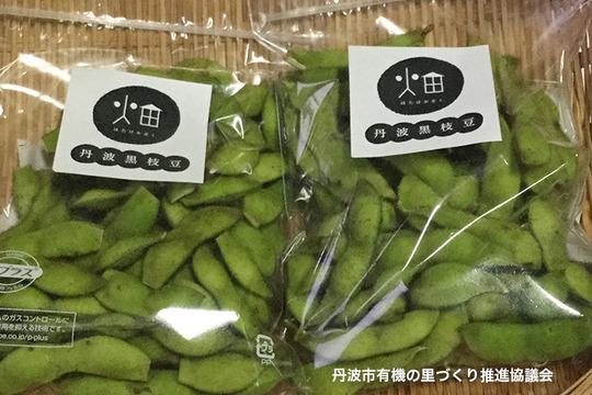 【受付期間10月25日まで】畑家族の丹波黒枝豆250g×2袋入