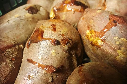 自然栽培のとろとろ安納芋5kg