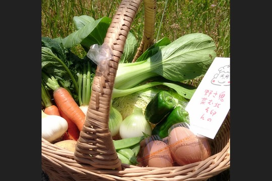 「有機JAS認証」旬の野菜セット L 8~10品