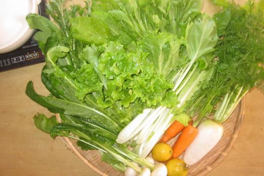 瀬戸内海から冬のお鍋用お野菜便(8品目程度 2~3名様分)