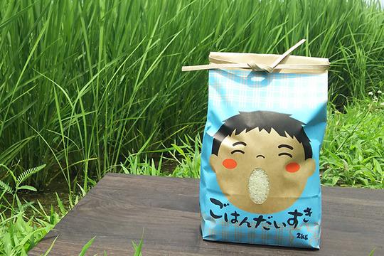 これが自然エネルギーの結晶≫医農米「かぐれ」【玄米】2kg