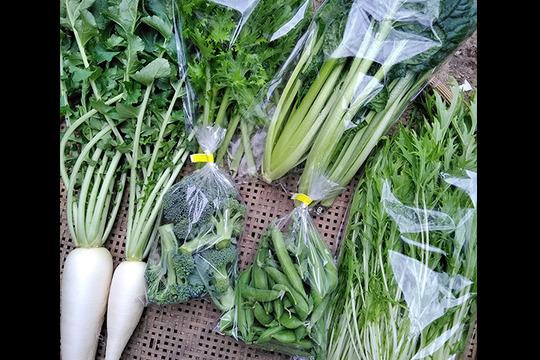 野菜ソムリエがお届け*季節のお野菜詰め合わせ(6-7品目)