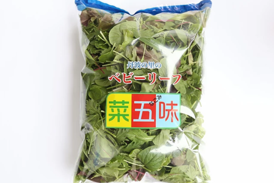 """【クール便でお届け】丹波の里ベビーリーフ""""菜五味"""" 500g × 2袋"""