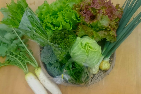 旬のこだわりお野菜セット(2〜4人用、少し多め)