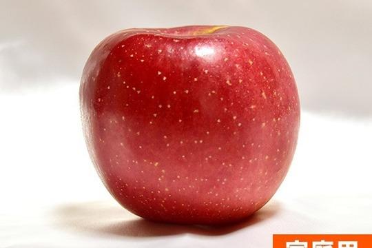 りんご 長野県産 サンふじ スマートフレッシュ 家庭用 3kg 9-12玉