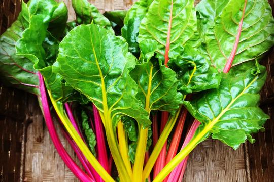 【最高に贅沢な野菜】☆畑直送☆こだわり有機栽培[最高級野菜]セット