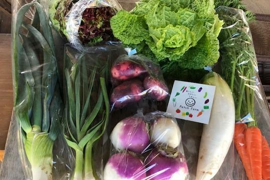 【お鍋野菜ぐるっと収穫7品】野菜バスケット