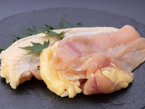 かごしま地鶏 むね肉5枚・ささみ4本/計1.2kg with黒さつま鶏