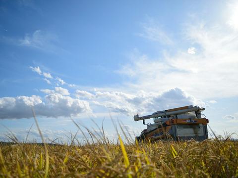 無化学肥料・精米タンパク6.8%以下の特別栽培米ゆめぴりか