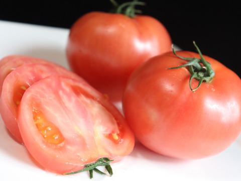 ザ・トマト!トマト好きに食べて欲しいりんか(4kg)