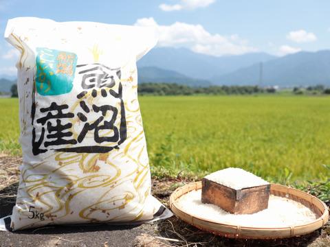 南魚沼産コシヒカリ5㎏/ちょいワル椎茸500gのセット